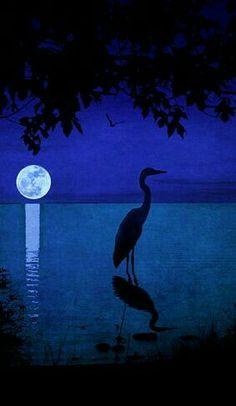 Night Crane by Megan Noble