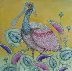 Tropical World Spoonbill I colored using Prismacolor Premier colored pencils.