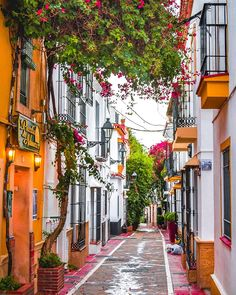 "coiour-my-world: ""Marbella Old Town, Spain Marbella Old Town, Marbella Malaga, Marbella Spain, Beautiful Streets, Beautiful Places, Amazing Places, Spanish Towns, Malaga Spain, Andalusia Spain"