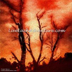 SUMMER FIRE. http://www.liveeachadventure.com/our-own-original-digitalart-images/