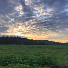 Kurzfristig sah es so aus als ob die Sonne doch die Wolken besiegen konnte... jetzt ist alles wieder grau in grau und kalt. Kann also nur besser werden. Wobei: es könnte ja auch regnen oder stürmen oder sogar beides. Also bin ich besser zufrieden mit dem was ich habe oder wandere nach Honolulu aus!  #nofilter #sunrise #greyday #theresalwaysthesun #goodmorning #gutenmorgen #grauerhimmel #herbsttag #sonnenaufgang #filterlos