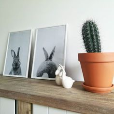 Print 48 en Affiche sous cadre standard par Lila x Lola   JUNIQE Portrait, Planter Pots, Photos, Lilac, Black Picture, Black And White, Frames, Wall Canvas, Deko
