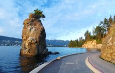Stanley Park, Vancouver #bc #britishcolumbia #beautiful #tourism #touristsite #travel #canada #canadian #seawall
