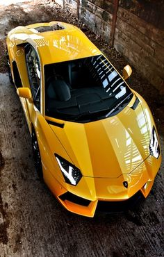 Lamborghini#luxury sports cars