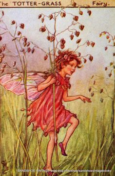 Having books by Cicely Mary Barker in my childhood gave me a taste for beautiful pictures that are accurate, pretty but never cutesy or twee.