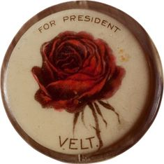 Theodore Roosevelt, Vintage Tins, Auction, Politics, Buttons, Political Campaign, Presidents, Trail, War