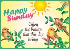 Happy Sunday Messages, Happy Sunday Images, Sunday Greetings, Happy Sunday Friends, Good Morning Friends, Good Morning Messages, Sunday Morning Wishes, Good Morning Happy Weekend, Happy Weekend Quotes