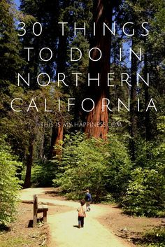 30 things to do in Northern CA from the Bay Area to Lake Tahoe, Sonoma County to Lodi & beyond. Good post!