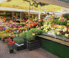 Samstag Morgen gehe ich wann immer es mir möglich ist auf den Markt um frisches Gemüse und Obst zu kaufen. Ich liebe diesen Fleck, hier bekommt man alles was man braucht. Hier ein paar Schnappschüsse.