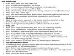 Visual Birth Plan  Our Next Baby    Birth Pregnancy