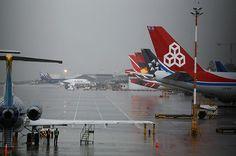 Aerocivil anuncia 'plan de choque' por congestiones en aeropuertos ... - El Pais - Cali Colombia