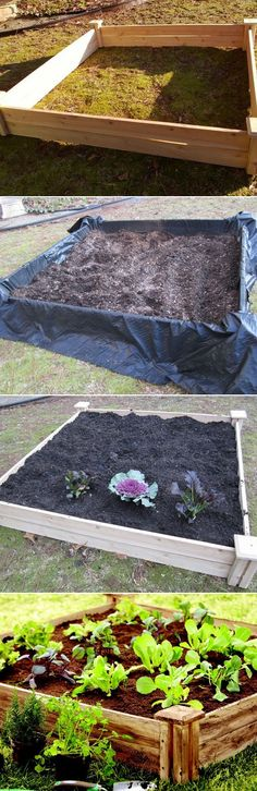 The Backyard Garden: Diy raised garden beds