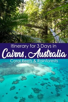 Itinerary for 3 Days in Cairns, Australia: Coral Reefs and Rainforests. Cairns is the gateway to both the Great Barrier Reef and the Daintree Rainforest. Amazing Things To Do in Australia Australia Honeymoon, Australia Travel Guide, Visit Australia, Australia Trip, Australia Holidays, Brisbane Australia, Sydney Australia, Western Australia, Australia Shopping