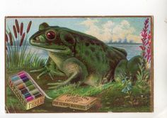 Advertising Trade Card Frog J P Coats Thread for Sewing Machines