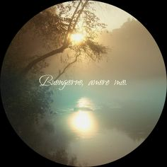 #buongiorno #amoremio Good Morning, Planets, Celestial, Beautiful, Buen Dia, Bonjour, Good Morning Wishes
