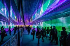the pixels crossing: sensory tunnel by miguel chevalier - designboom   architecture & design magazine
