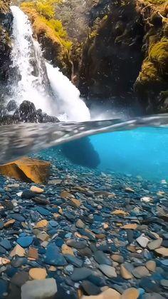 WallpapersMania Live Wallpaper [Video] | Best nature wallpapers, Wallpaper earth, Iphone wallpaper photos