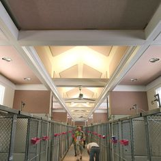 Soundproofing a Dog Kennel has benefits for both humans and dogs. It reduces both human ear fatigue stress for the dogs, which results in less barking. K9 Kennels, Cheap Dog Kennels, Dog Boarding Kennels, Pet Boarding, Commercial Dog Kennel Ideas, Dog Kennel Designs, Dog Daycare, Daycare Ideas, Dog Hotel