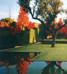 In life, everything but the light is optional. Garden by Fernando Caruncho. Really like the crisp lines.