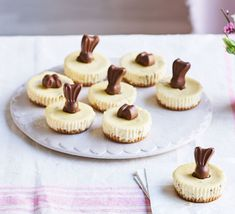 These bite-sized mini cheesecakes are sure to be your new favourite Easter dessert. Top with chocolate bunnies for a super-cute treat Maltesers Cheesecake, Malteser Cake, Easter Cheesecake, Cheesecake Recipes, Bbc Good Food Show, Desserts Ostern, How To Make Cheesecake, Digestive Biscuits, Cupcakes