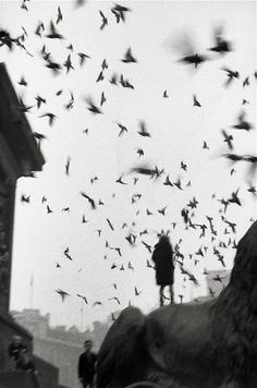 sergio larrain - Black and White Photography books of the year - Telegraph