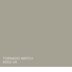 Here's a tip from Genevieve Gorder: Tornado Watch 6002-2A is a beautiful dark beige, great for offices or a den. Find more inspiration from our Valspar Perfect Neutrals Pinterest board: https://www.pinterest.com/valsparpaint/valspar-perfect-neutrals/  Lowe's: Tornado Watch 6002-2A ACE: Old Soul 418Q Indepedent: Building Block V145-3