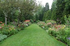 Juniper Hill: The Gardens of Mount Desert Island- Thuya Garden