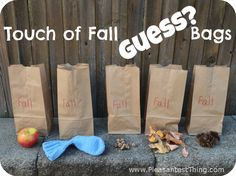 Fall guess bags - blindfold kids and have them guess what is in the bags- fall theme