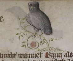 Universitätsbibliothek Heidelberg, Cod. Pal. germ. 7 Wahrsagebuch (Divination Book) http://digi.ub.uni-heidelberg.de/diglit/cpg7