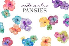 Watercolor Pansies by Angie Makes on Creative Market
