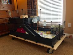 Guinea Pig Cage complete! I built a platform with casters to make it easier to move around and clean. Works great!