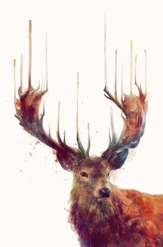 Red Deer // Stag Art Printhttp://society6.com/product/Red-Deer-Stag-ENV_Print#1=45