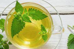 Herbs, Gardening, Food, Lawn And Garden, Essen, Herb, Meals, Yemek, Eten