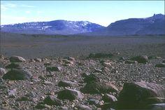 Plateau des Fondrières - Kerguelen (kerguelen-voyages.com)