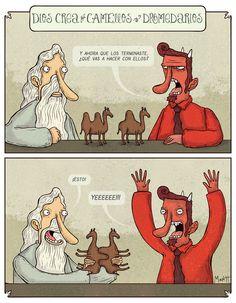 Montt -  Dios Crea Camellos y Dromedarios