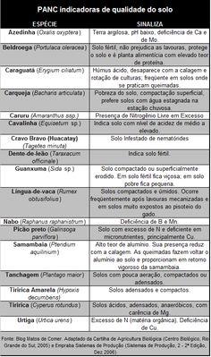 PLANTAS INDICADORAS