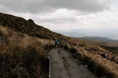 Hiking the famous Tongariro Alpine Crossing New Zealand, Travel Inspiration, National Parks, Hiking, Country Roads, Landscape, News, Walks, Scenery