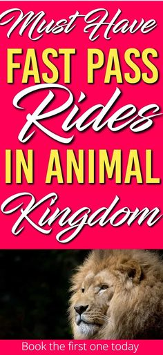 Here is a list of the Must Have Fast Pass Rides in Disney World's Animal Kingdom. The first one you need to book as far in advance as you can. These Disney world tips for Animal Kingdom will ensure you have a great time! Fastpass Disney World, Disney World App, Disney World Countdown, Disney World Rides, Disney World Planning, Disney World Vacation, Disney Worlds, Disney Parks, Disney Travel