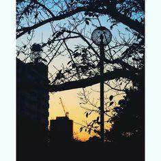 Instagram【llx_teto_xll】さんの写真をピンしています。 《たいそう気に入っているマーブルシルエット。i Phone6にて撮影。 ・ ・ ・ #tokyocameraclub #team_jp_ #team_jp_東 #igersjp #icu_japan #icu_sunset #skyshotarchive #super_photosunsets #phos_japan #japan_daytime_view #japan_night_view #jp_gallery #bestjapanpics #reco_ig #lovers_nippon #instagood #夜景 #ファインダー越しの私の世界 #写真好きな人と繋がりたい #写真撮ってる人と繋がりたい》