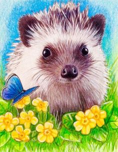 Hedgehog Wildlife, ACEO Limited Edition Print from my Original Painting
