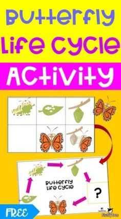 Spring and butterfly are inseparable. Hence it is a great idea to do Butterfly Life Cycle Activity. Preschool Lesson Plans, Free Preschool, Preschool Printables, Butterfly Life Cycle, Sequencing Activities, Learning Letters, Art Lessons Elementary, Life Cycles, Business For Kids