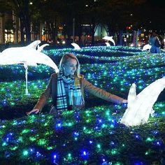Magic in the air✨ Друзья, хочу перед Новым Годом слетать в Гонконг, кто-нибудь может посоветовать лучшие места для посещения, видовые, рестораны, магазины? Наверняка есть какие-то секретные места #japan #illumination #magic #dolphins #nighttime #picoftheday #instaplace #yuryablinchik #япония #иллюминация #сказка #дельфин #магия #инстаграмнедели #юляблинчик #イルカ #イルミネーション #夜 #ロシア人 #ユーリャ #ユーリャブリンチク