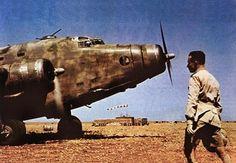 "Libya, 1942. An Italian aviator ready to get on his SM 82 ""Marsupiale"" plane in a Libyan airdrome. #airplane #savoiamarchetti #sm82 #marsupiale #plane #air #sky #mission #airport #airdrome #libia #libya #deserto #desert #war #guerra #northafrica #1942 #secondworldwar #worldwar #worldwartwo #worldwarii #worldwar2 #worldwar #ww2 #wwii #ww2italy"