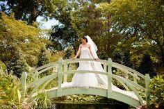 beautiful bride portrait, Dallas bridal portraits, Dallas Arboretum, bridals, bridal session, outdoor, gardens, flowers, modern, traditional, elegant, timeless, bridal photos, photos of the bride, http://www.monica-salazar.com