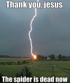 Thank God the spider is dead Christian meme  #Christianmemes #Christian #Memes
