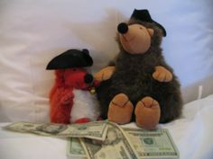 Purves the Squirrel and Wiggy the Hedgehog in Williamsburg, Virginia, USA