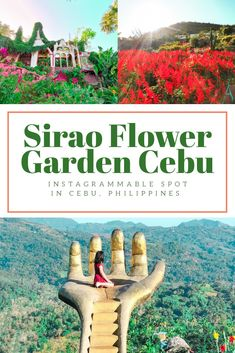 Sirao Garden - Little Amsterdam of Cebu - FaeCelinee Philippines Cebu, Philippines Travel Guide, Philippines Outfit, Phillipines Travel, Amazing Destinations, Travel Destinations, Asia Travel, Mexico Travel, Spain Travel