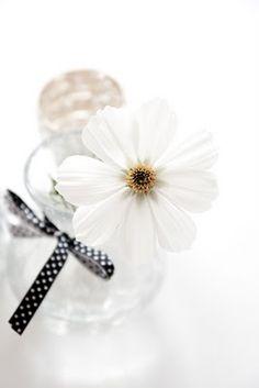 Borddekking Wedding Inspiration, Wedding Rings, Engagement Rings, Jewelry, Enagement Rings, Bijoux, Engagement Ring, Jewlery, Jewels