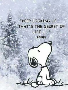 So true!  Thanks for the reminder Snoopy!