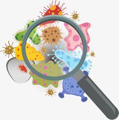 Aggregation of bacteria PNG and Vector Biology Drawing, Biology Art, Bacteria Cartoon, Tectonique Des Plaques, Binder Cover Templates, Science Clipart, Chemistry Art, School Murals, School Labels